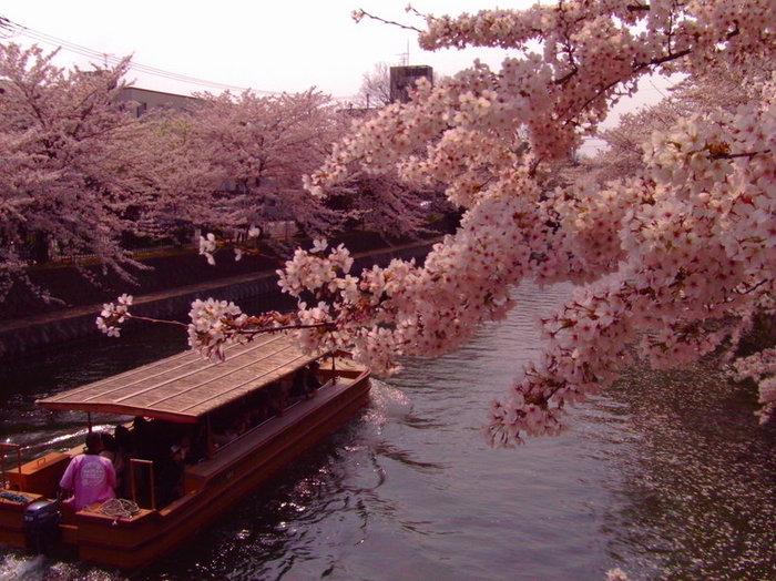 醍醐寺 072[1].jpg